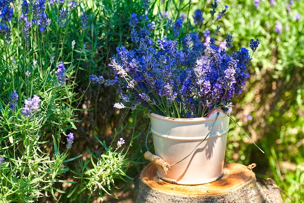 White vase with lavender bouquet on lavender field background