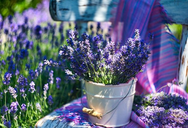 White vase with lavender bouquet on vintage chair, on lavender field background