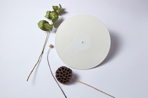 Белая виниловая аудиозапись и сухие ветки