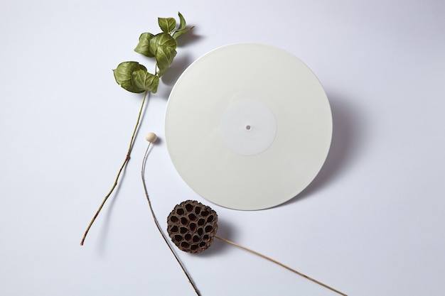 White vinyl audio record and dry branches