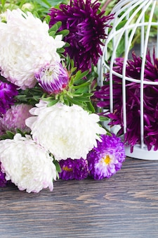 White and violet aster flowers on table