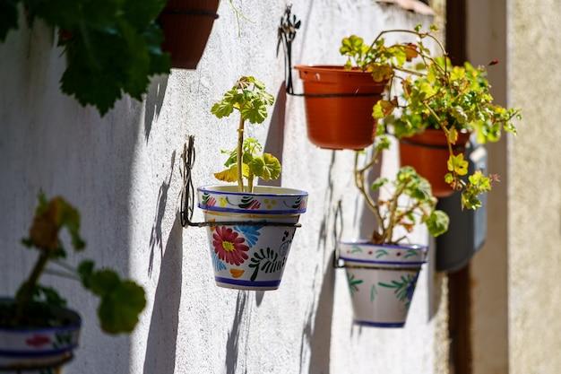 녹색 식물의 화분과 다른 색상의 꽃에 매달려있는 흰 벽. 흐릿한 분위기. 스페인.