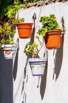 녹색 식물의 화분과 다른 색상의 꽃에 매달려있는 흰 벽. 흐릿한 분위기. 스페인. 프리미엄 사진