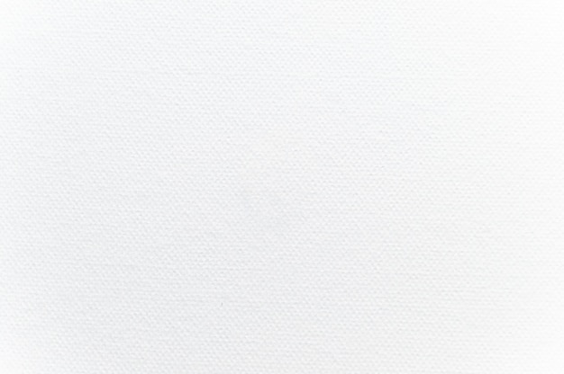 White watercolor paper texture for background.