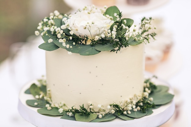 White wedding cake decorated with green leaves and gypsophila flowers.