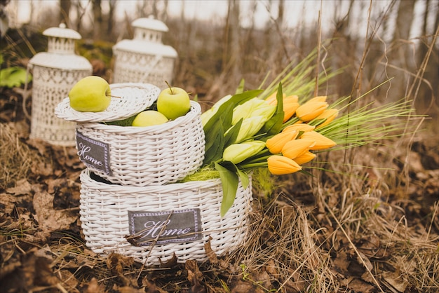 White wicker baskets with tulips, autumn decor for photo shoots and weddings