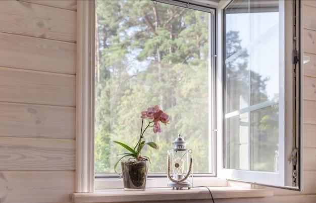 Белое окно с москитной сеткой в деревенском деревянном доме с видом на сад, сосновый бор. орхидея фаленопсис на подоконнике