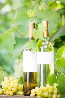 白ワインのボトルとブドウ園に対するブドウの房