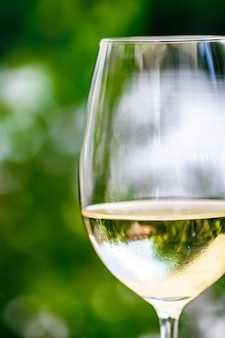 夏のガーデンテラスにある高級レストランでの白ワインviのワイナリーでのワインテイスティング体験...