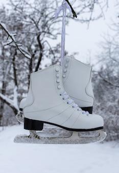 白人女性のスケート靴が木にぶら下がっている、冬の時間、野外活動