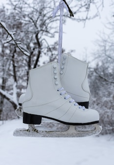 White women's skates hang on a tree, winter time, outdoor activities