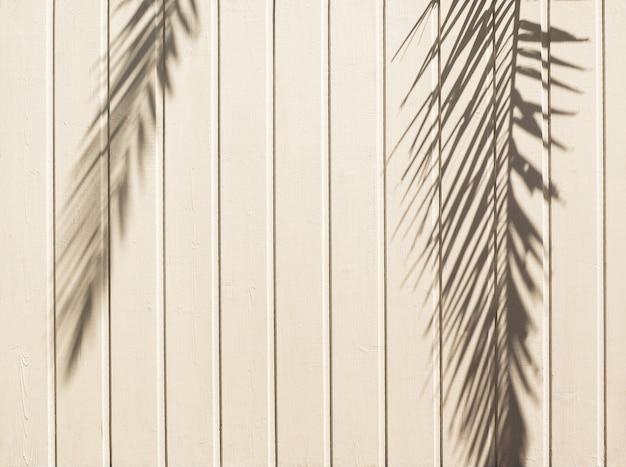 ヤシの葉の影と白い木製の背景。自然な風合い