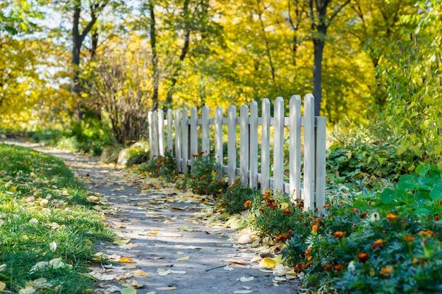 화창한 가을 날에 중간에 경로가있는 공원이나 숲에 흰색 나무 울타리