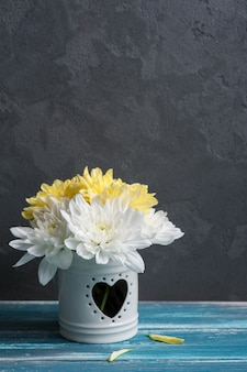 White and yellow chrysanthemum in a pot