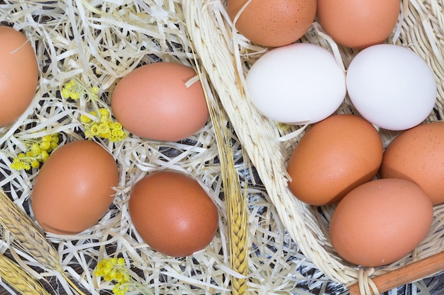 White and yellow eggs in the hay