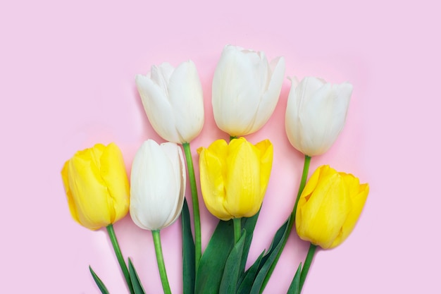 White and yellow tulips flowers on pink desk