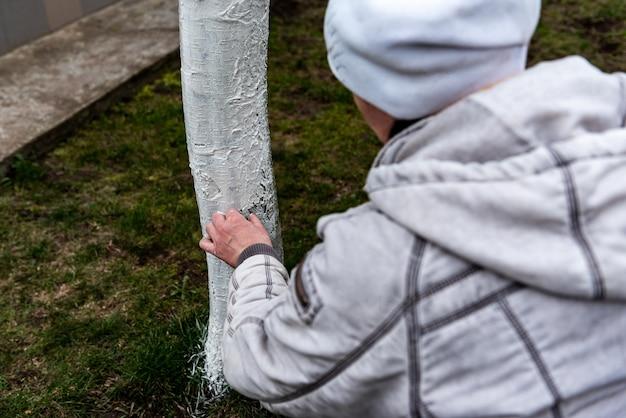 春の果樹の白塗り。庭の手入れ。