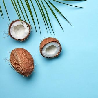 텍스트를 위한 공간 사본이 있는 파란색 배경에 야자수 잎이 있는 코코넛 전체와 반. 이국적인 과일입니다. 플랫 레이