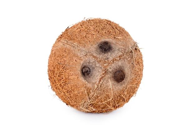 白い背景に分離されたココナッツ全体。特徴的な3つの毛穴を示す皮をむいたココナッツ果実。