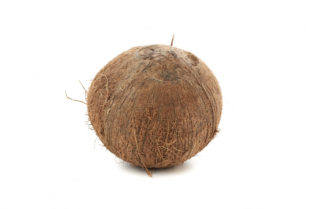 Whole coconut isolated. tropical fruit