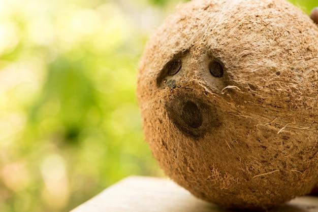 自然の表面にココナッツ全体。