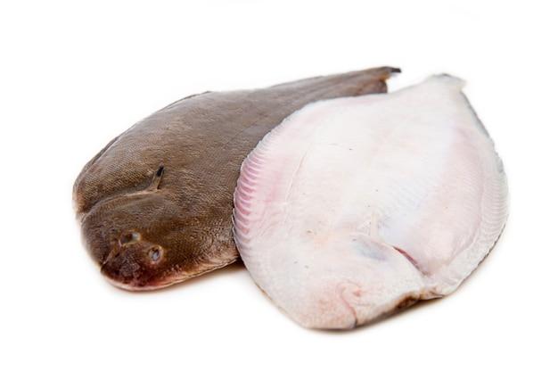 흰색 배경에 전체 몇 신선한 단독 생선