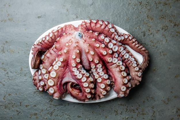 Whole fresh raw octopus on gray slate