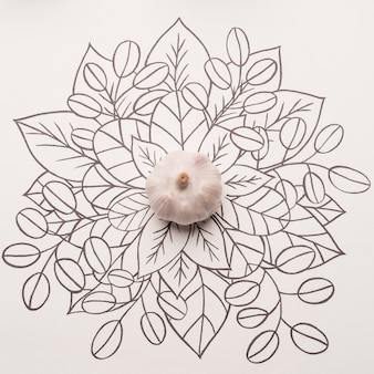 Whole garlic over outline floral background