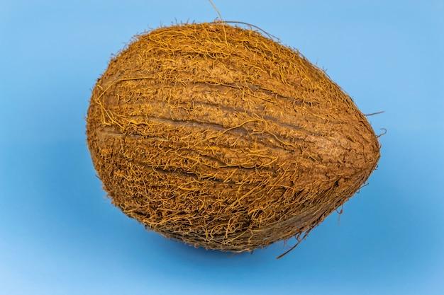 青い表面全体の毛むくじゃらのココナッツ