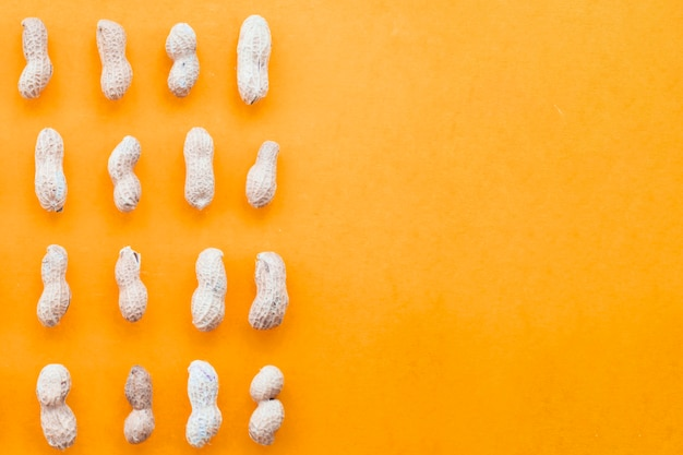 Whole peanuts arranged in a row on an orange background