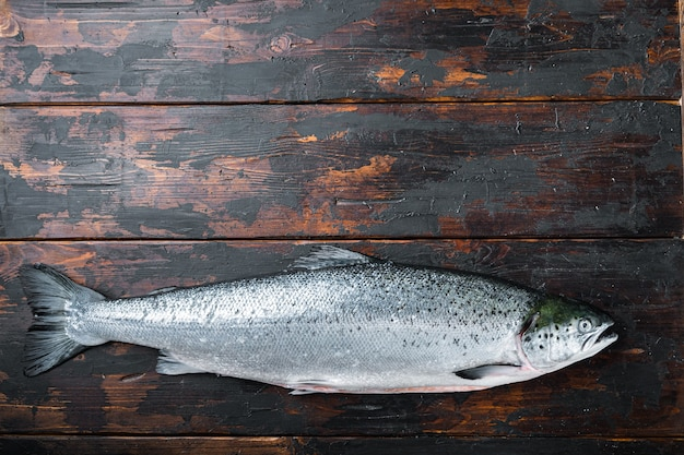 Whole raw salmon on wooden table, top view.