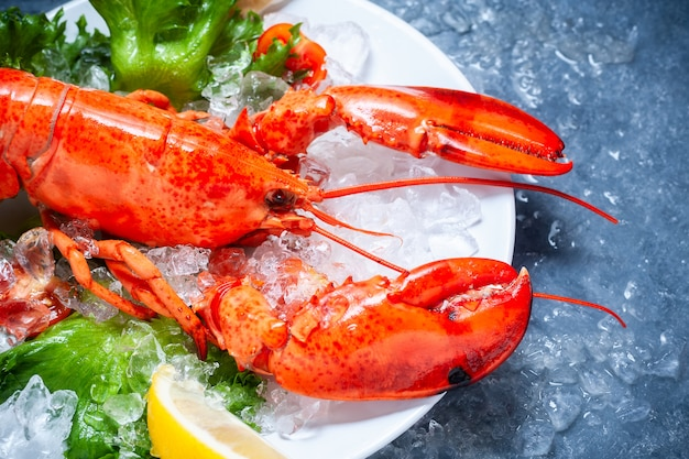 Whole red lobster with tomato and slices of lemon on white plate