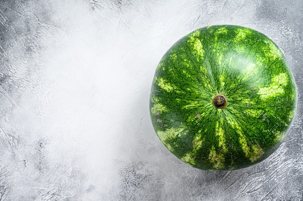 Whole ripe green watermelon. gray background. top view. copy space.