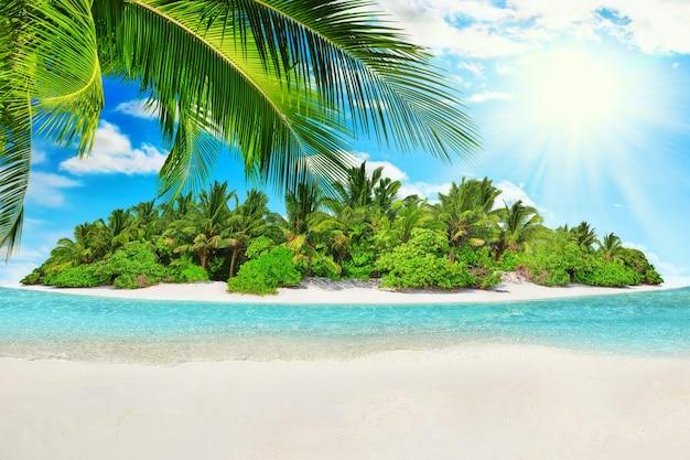 Весь тропический остров в атолле в индийском океане. необитаемый и дикий субтропический остров с пальмами. пустой песок на тропическом острове.