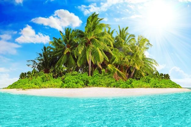 Весь тропический остров в атолле в тропическом океане в летний день. необитаемый и дикий субтропический остров с пальмами. экваториальная часть океана, тропический остров-курорт.