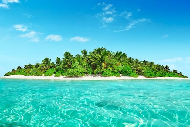 Весь тропический остров в атолле в тропическом океане. необитаемый и дикий субтропический остров с пальмами. экваториальная часть океана, тропический остров-курорт.