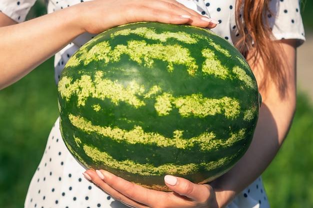 전체 수박은 녹색 자연 배경에서 젊은 여성의 손을 닫습니다.
