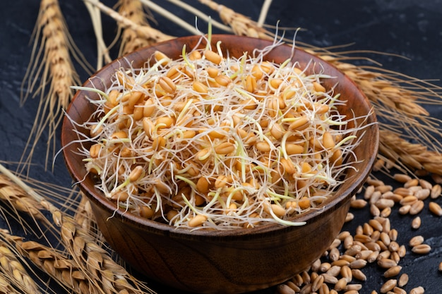 Whole wheat sprouts. raw, vegan, vegetarian healthy food. close-up.