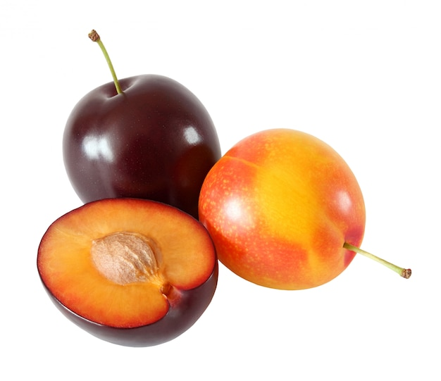 Whole yellow and purple plum isolated