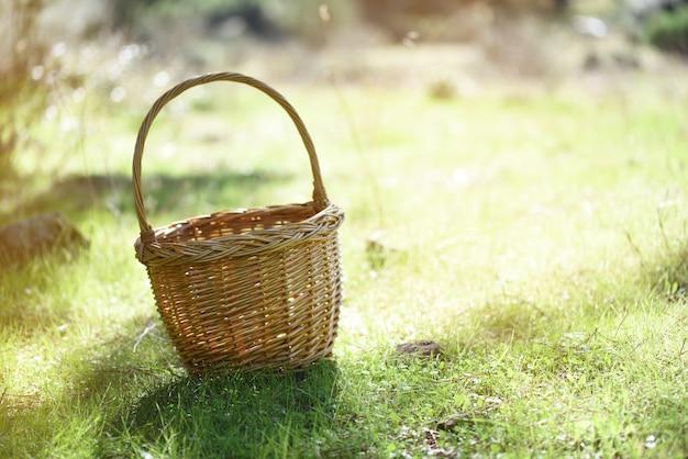 日当たりの良い牧草地で隔離された籐のバスケット