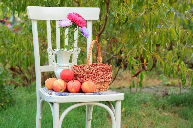 Плетеная корзина, фарфоровая ваза с красным цветком астры и яблоками на белом стуле в деревенском стиле в саду с зеленым естественным фоном. размытый фон.