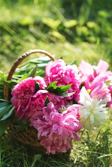 美しいピンクと白の牡丹の籐のバスケット