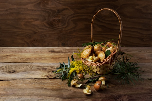 Wicker basket with forest mushrooms on the rustic surface