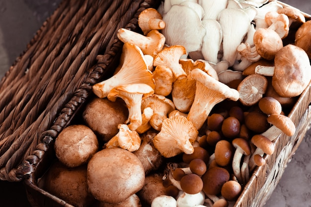 Wicker basket with forest rare delicious edible mushrooms