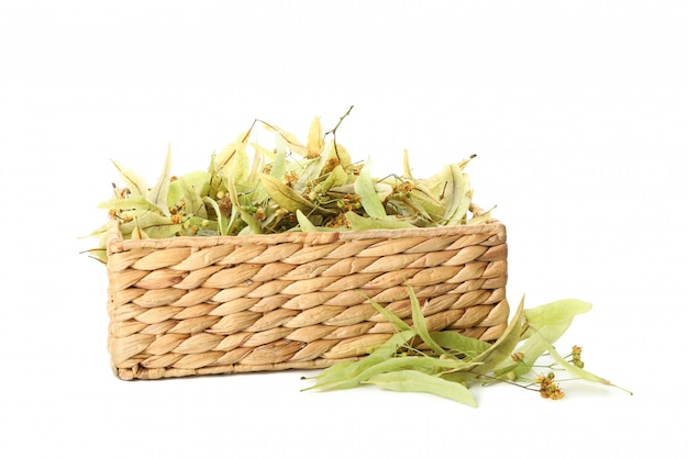 Wicker basket with linden isolated on white