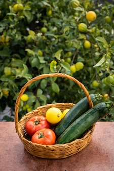 Wicker basket with organic field products, tomatoes, zucchini and lemons. organic garden concepts