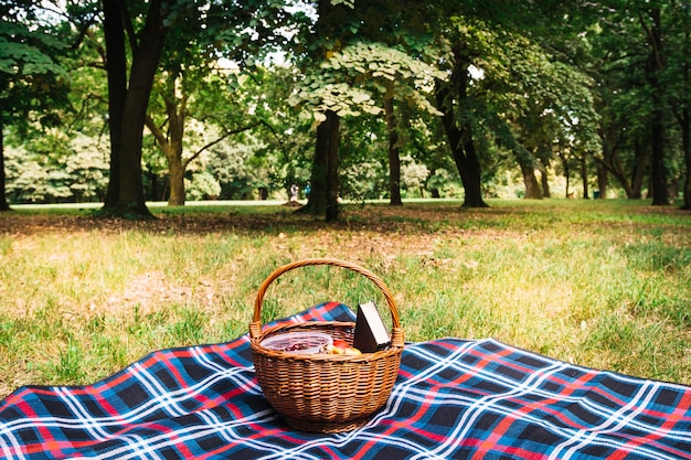 Wicker picnic basket on blanket in the park