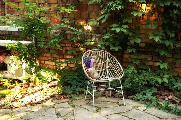 Плетеное кресло из ротанга в саду на фоне кресла с вьющимися дикими виноградными лозами на заднем дворе внутренний дворик