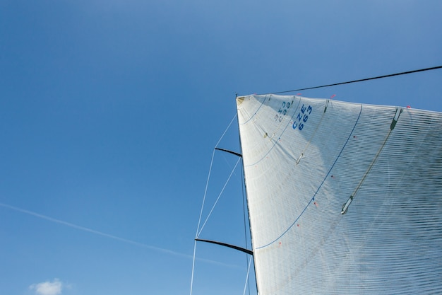 Wide angle photo of two sails full of strong wind