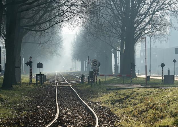 Широкоугольный снимок железной дороги, идущей через лес.
